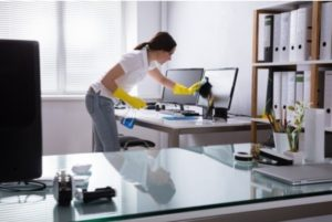 Professional Maid Cleaning Personal Computer